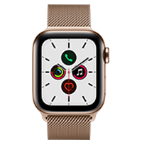 A front view of the Gold Stainless Steel Case with Milanese Loop.