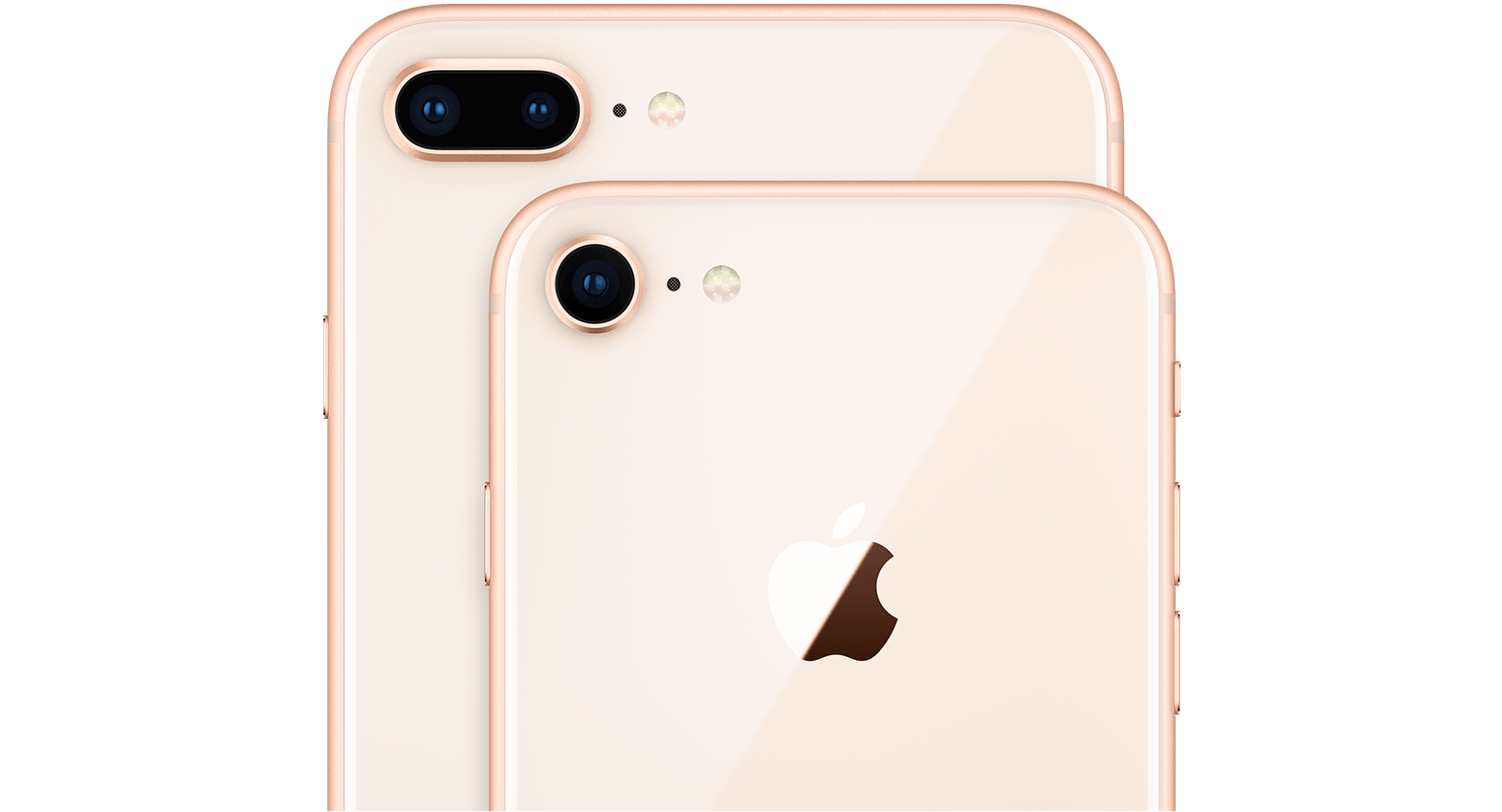 Two iPhone 8s showing cameras